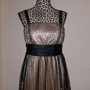 R&M Richard's pelile Dress size 12